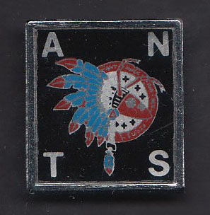 ADAM & THE ANTS badge #12